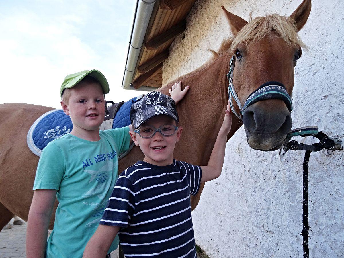 Jízdy na koních Stáj Statenice